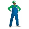 Super Mario Brothers Luigi Adult Costume